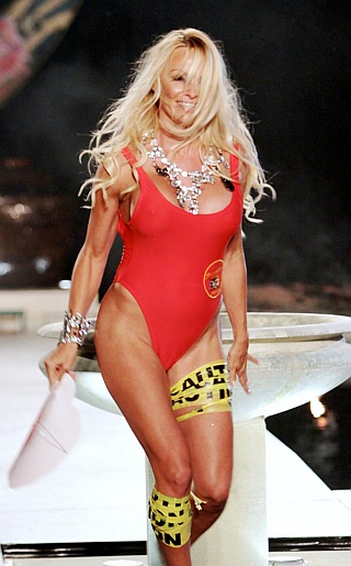 Pamela Anderson Swimsuit Pictures