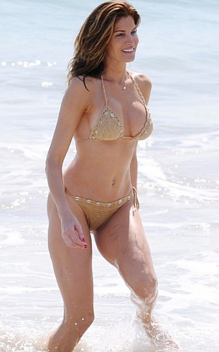 Stephanie Seymour Bikini Pictures
