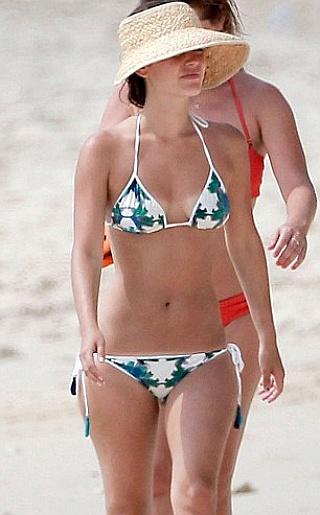 Rachel Bilson Bikini Pictures