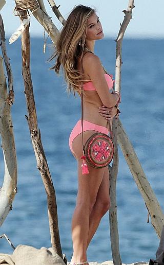 Nina Agdal Bikini Pictures
